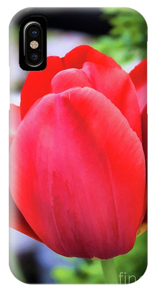The Tulip Beauty IPhone Case
