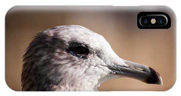 The Best Side Of The Gull IPhone Case