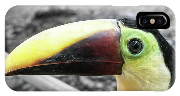 The Big Toucan IPhone Case
