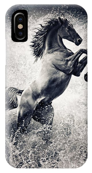 The Black Stallion Arabian Horse Reared Up IPhone Case