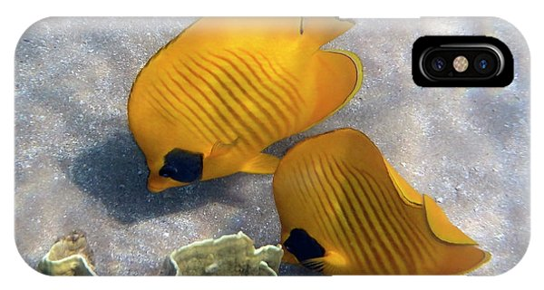 The Bluecheeked Butterflyfish IPhone Case