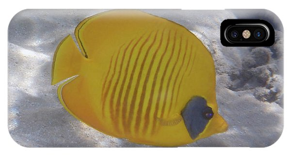 The Bluecheeked Butterflyfish Red Sea IPhone Case