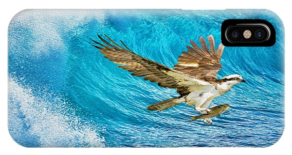 Osprey iPhone Case - The Catch by Laura D Young