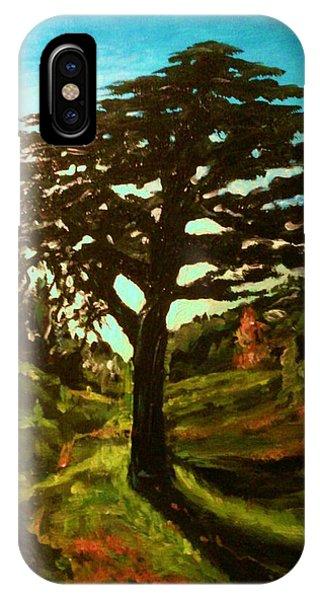 The Cedar Tree Against The Blue IPhone Case