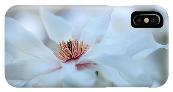 The Center Of Beauty IPhone Case