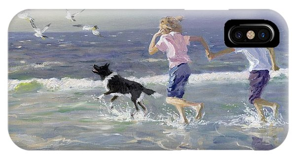 Seagull iPhone Case - The Chase by William Ireland