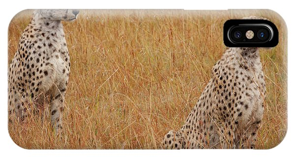 Big Cat iPhone Case - The Cheetahs by Smart Aviation