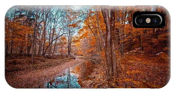 The Color Of Fall IPhone Case