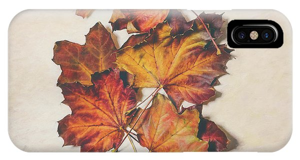 Amber iPhone Case - The Colors Of Fall by Scott Norris