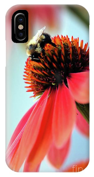 The Coneflower Collection 2 IPhone Case