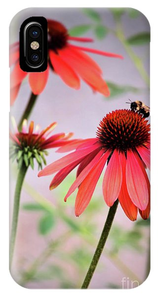 The Coneflower Collection IPhone Case