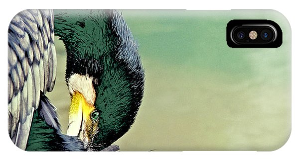 The Cormorant IPhone Case
