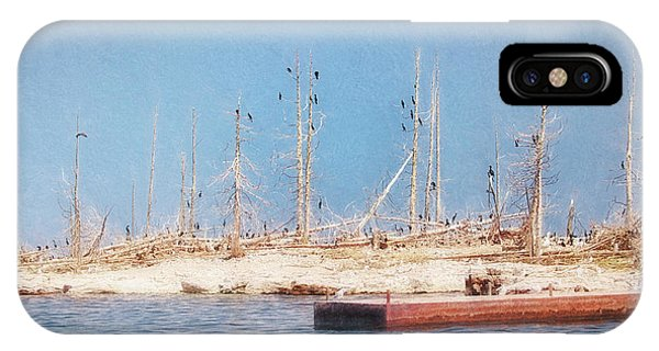 IPhone Case featuring the photograph The Cormorants At Deaths Door by Susan Rissi Tregoning