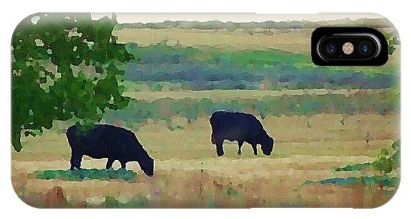 The Cows Next Door IPhone Case