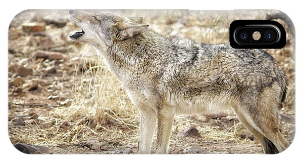 The Coyote Howl IPhone Case