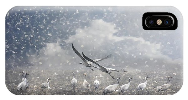 Migratory Birds iPhone Case - the cranes of Fischland by Joachim G Pinkawa