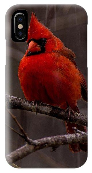 The Crimson Suit IPhone Case