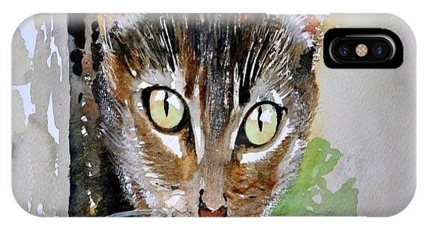 The Curious Tabby Cat IPhone Case