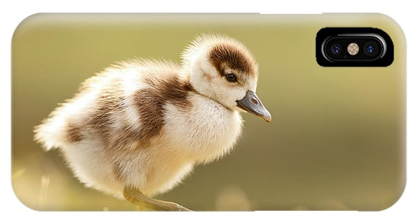 Goslings iPhone Case - The Cute Factor - Egyptean Gosling by Roeselien Raimond