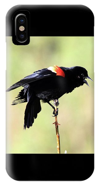 IPhone Case featuring the photograph The Dance by Shane Bechler