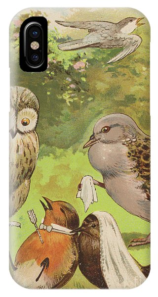 The Death Of Cock Robin IPhone Case