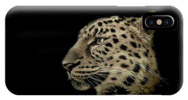 Leopard iPhone Case - The Defendant by Paul Neville