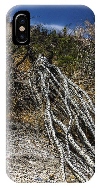 The Desert Sentinel IPhone Case