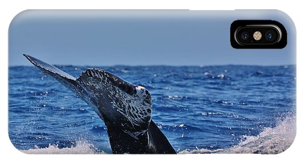 The Dive IPhone Case