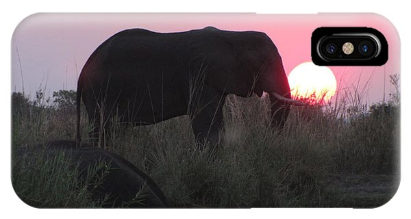 The Elephant And The Sun IPhone Case