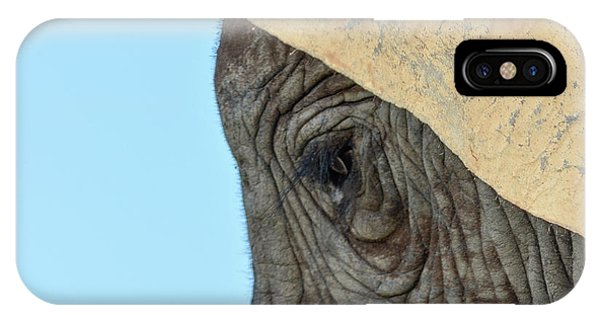 The Eye Of An Elephant IPhone Case