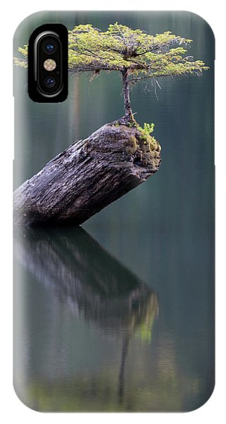 The Fairy Tree IPhone Case