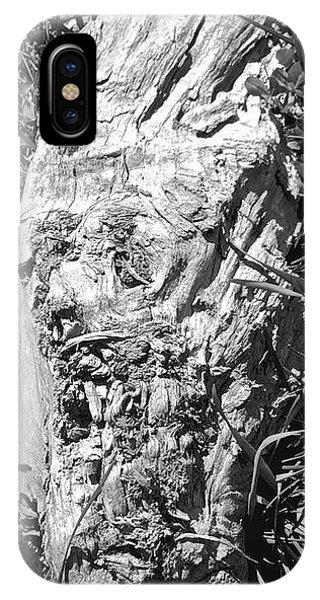 The Fallen - Unhidden Door IPhone Case