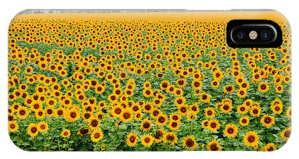 The Field Of Suns IPhone Case