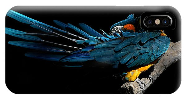 The Fine Art Of Preening IPhone Case