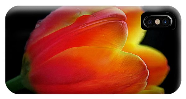 Black Tulip iPhone X Case - The Fire Within by Krissy Katsimbras