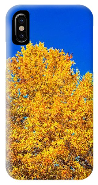 The Flare Of Fall On A Clear Day IPhone Case