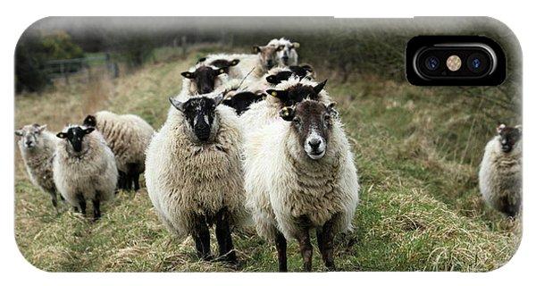 The Flock 2 IPhone Case