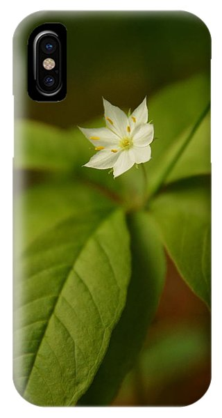 The Flower Of The Dark Woods IPhone Case