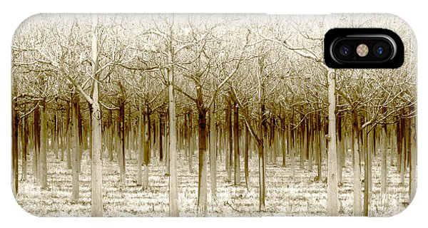 iPhone Case - The Forest For The Trees by Holly Kempe