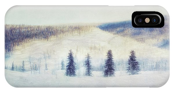 Spruce iPhone Case - The Four Evergreens by Priska Wettstein