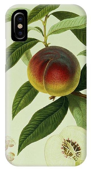 The Galande Peach IPhone Case