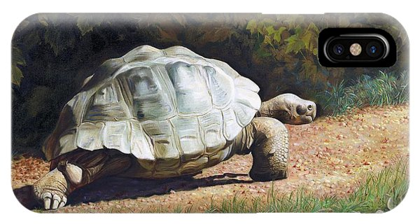 The Giant Tortoise Is Walking IPhone Case