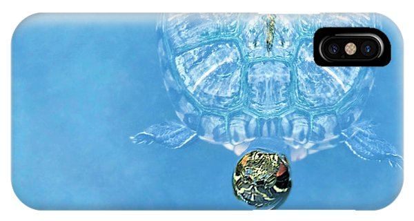 The Glass Turtle IPhone Case