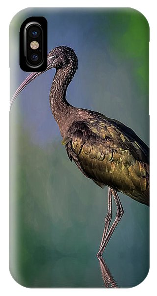 The Glossy Ibis Stroll IPhone Case