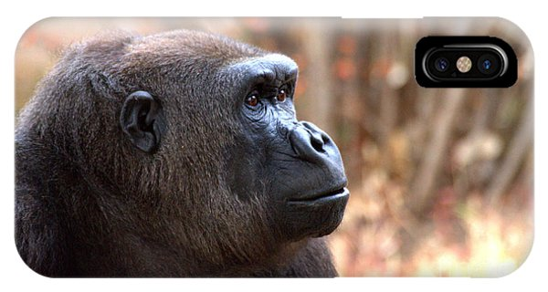 the Gorilla thinks IPhone Case