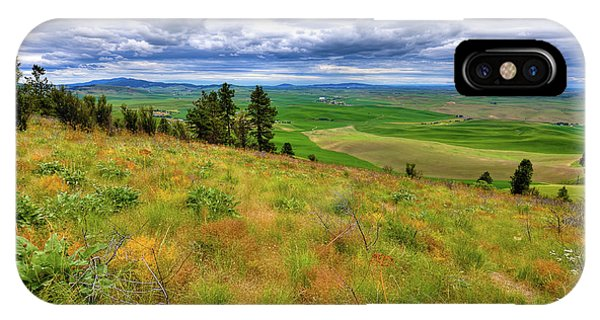 iPhone Case - The Grasses Of Kamiak Butte by David Patterson