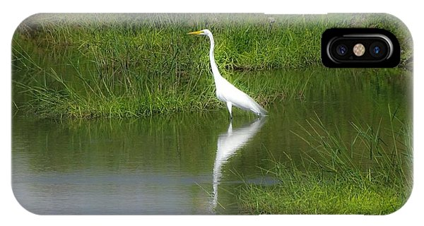 Great Egret By The Waters Edge IPhone Case