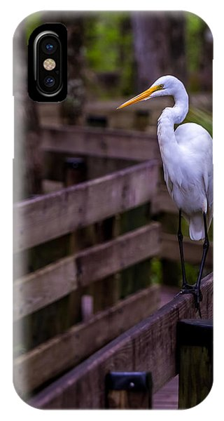The Great Egret IPhone Case