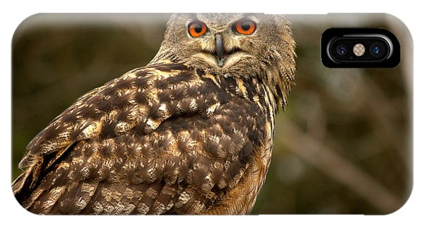 The Great Horned Owl IPhone Case