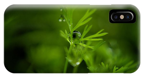 The Green Drop IPhone Case